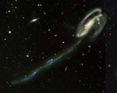 (Image - Tadpole Galaxy)