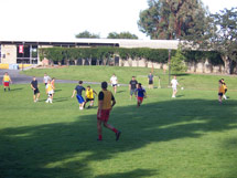 (Photo - soccer on the SLAC Green)