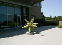 (Photo - star sculpture on Kavli Building patio)