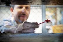 (Photo - researcher using a flip magnet)