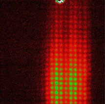 (Image - diffraction pattern)
