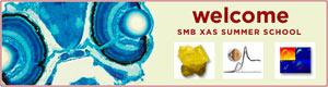 (Image - SMB summer school logo)